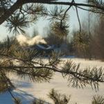 Трескучий мороз, д. Аббакумово