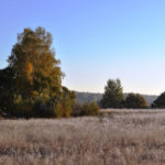 Осень в Аббакумово